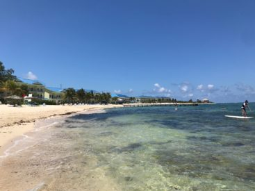 So I went to Grand Cayman Featured Image.